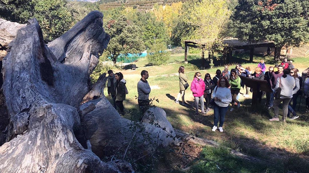 Informadors turístics d'arreu de Castelló i València coneixen Benassal